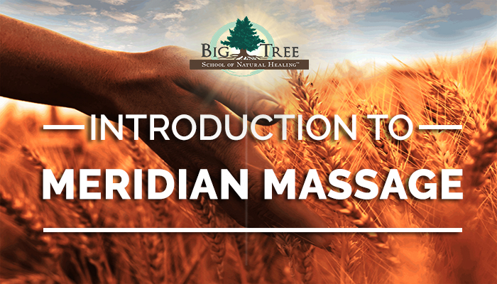Introduction to Meridian Massage