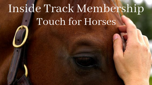 Touch for Horses: Inside Track Membership