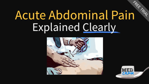 Evaluation of Acute Abdominal Pain Explained Clearly