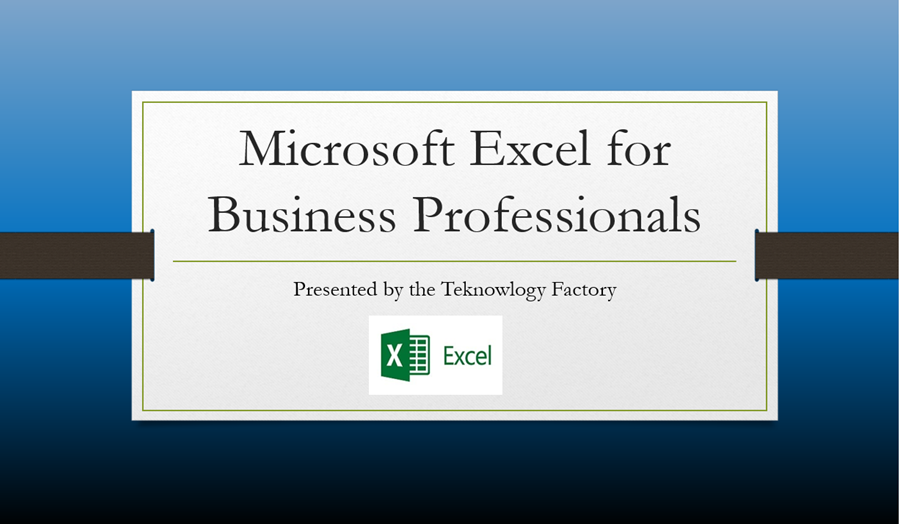 Microsoft Excel for Business Professionals Level 1