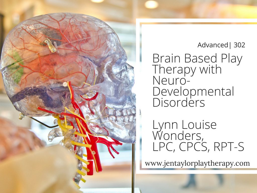Brain Based Play Therapy With Neurodevelopmental Disorders