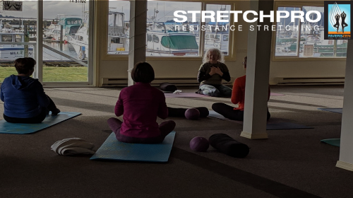 Balance, Align, Move, Stretch, Self-Massage and Strengthen with Peggy