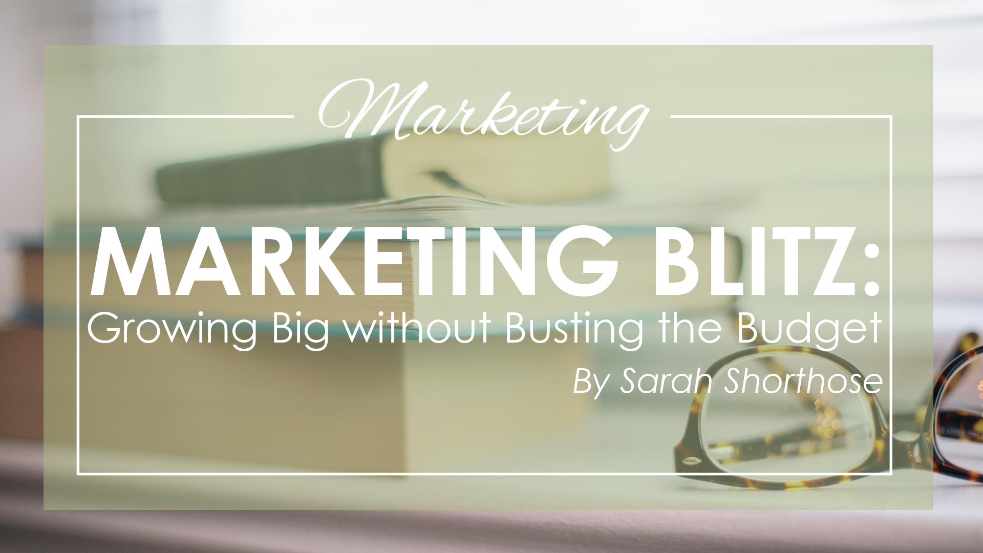 Marketing Blitz: Growing Big Without Busting the Budget