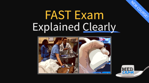 FAST Exam Explained Clearly