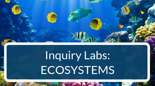 Ecosystems Inquiry Labs Bundle