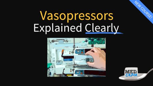 Vasopressors & Inotropes Explained Clearly