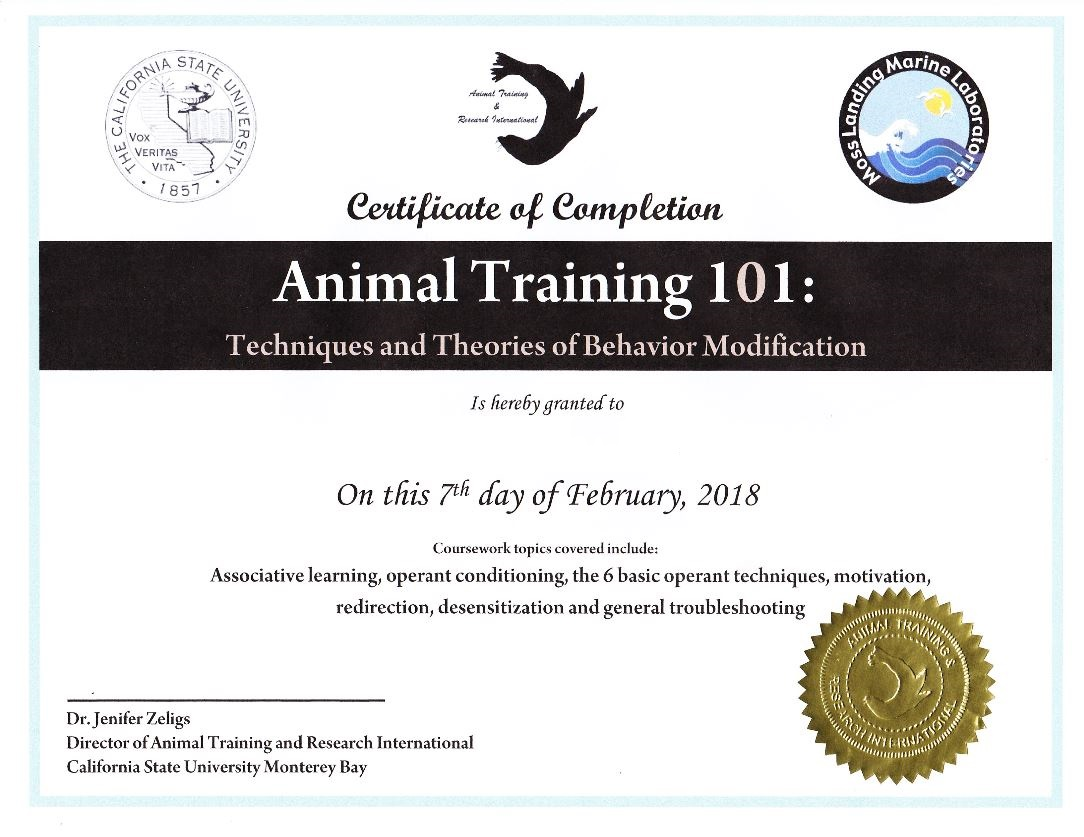 Certification Of Completion For Animal Training 101