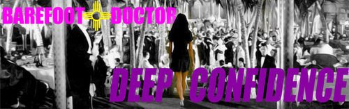 Barefoot Doctor's Deep Confidence Training