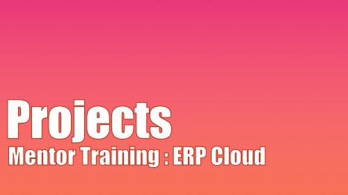 Mentor Training - ERP Cloud - Project Portfolio Management