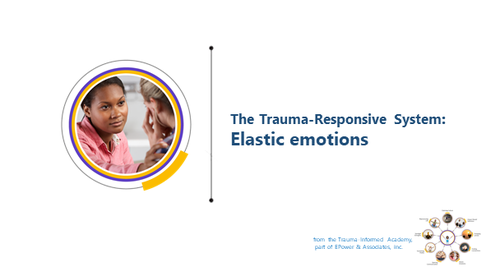 TRS: Elastic Emotions