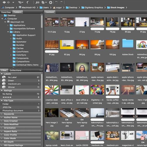 Using Adobe Bridge for File Management