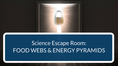Food Webs and Energy Pyramids Escape Room