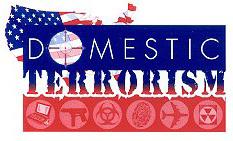 Insight into Domestic Terrorism