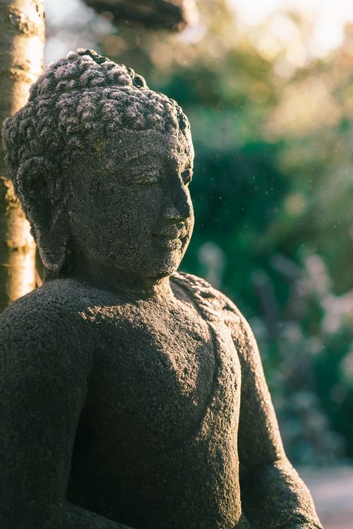 Science of Mindfulness and Meditation