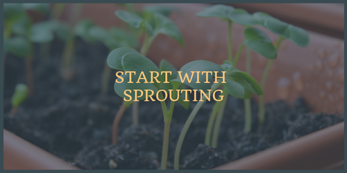 Start with Sprouting