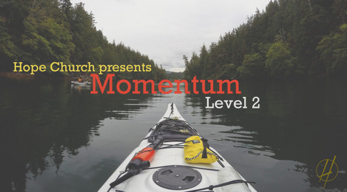 Momentum Level 2