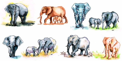 Elephants with Watercolour Markers