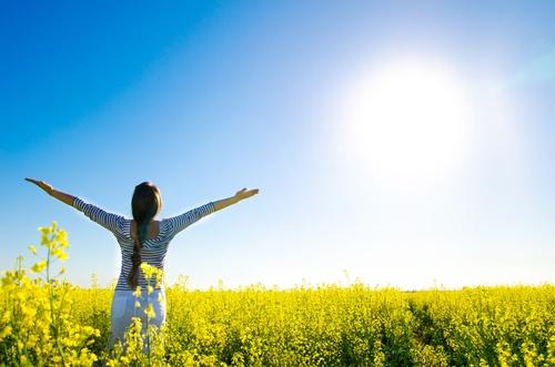 FREE 8-Day  Christian Meditation Mini-Course  (NEW)
