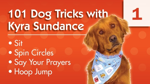 101 Dog Tricks with Kyra Sundance (#1)