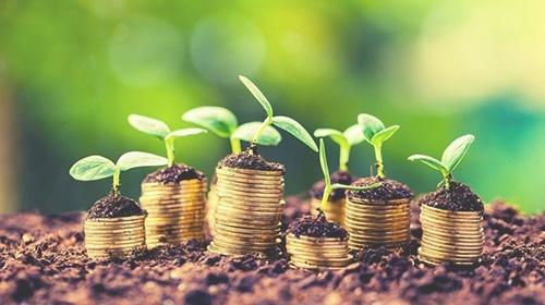 Healthy Wealth - Mindset & Strategies