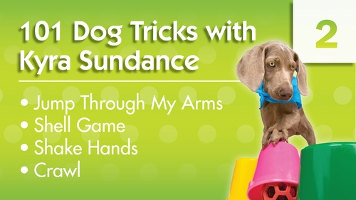 101 Dog Tricks with Kyra Sundance (#2)
