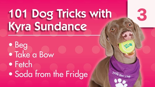101 Dog Tricks with Kyra Sundance (#3)