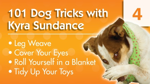 101 Dog Tricks with Kyra Sundance (#4)