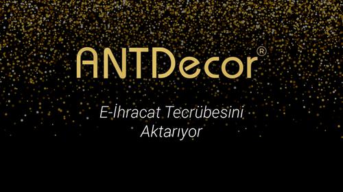 Antdecor.com E-ihracat Tecrübesini Aktarıyor - Burak Aykut