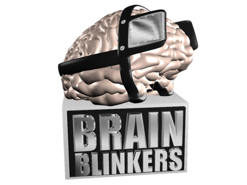 Brain Blinkers Online: Family & Friends