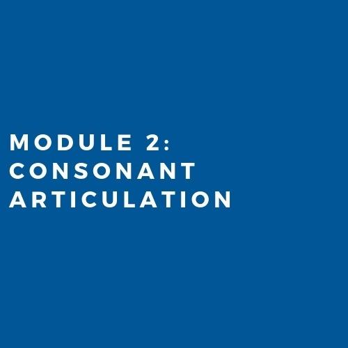 Module 2: Consonant Articulation (2019)