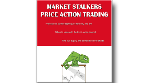 Ebook Vol 1 Market Stalkers: Price Action Trading