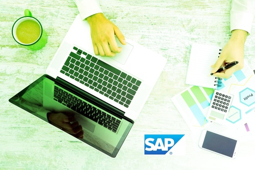 Introducción a SAP (básico)