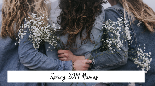 [Spring 2019 Mamas] Empowered Birth Immersion