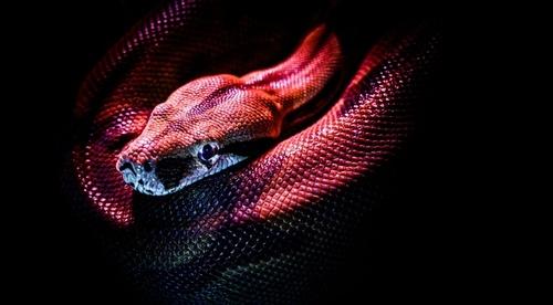 4. Python fejlesztés Raspberry Pi-n