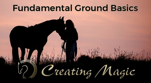 Creating Magic Series: Step 2 Fundamental Ground Basics