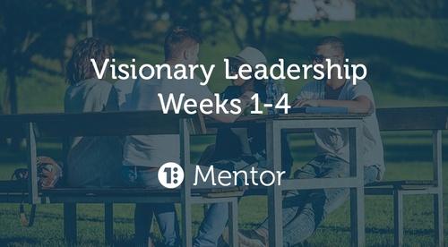 Visionary Leadership - Mentor