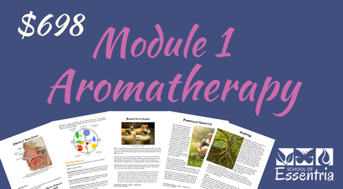 Aromatherapy Certification - Module 1 - Essential Oils