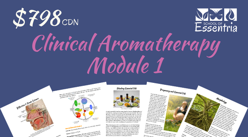 301: Clinical Aromatherapy Certification - Module 1 - Essential Oils