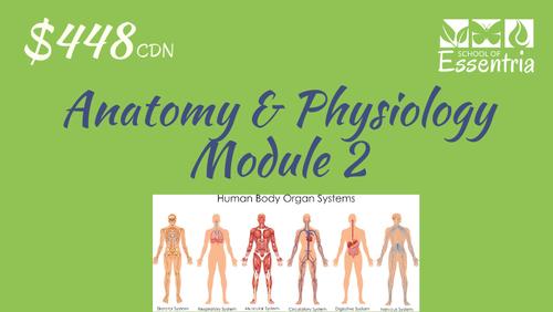 101, 201 or 301: Anatomy & Physiology - Module 2