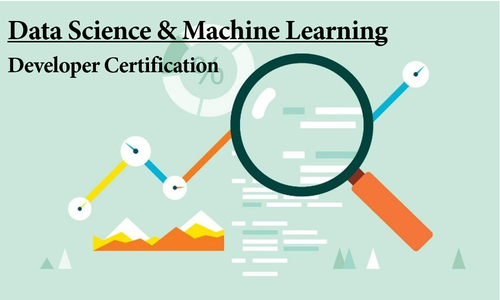 Data Science & Machine Learning Developer Certification Program