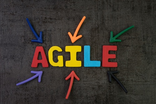 Assessment: Ready to Grow? How Agile is Your Organization?