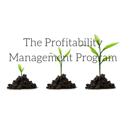 The Profitability Management Course