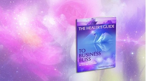 The Healer's Guide to Business Bliss eBook