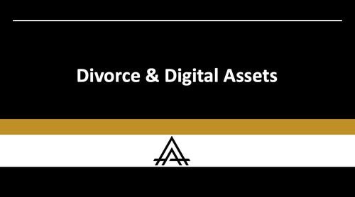 Divorce & Digital Assets Module