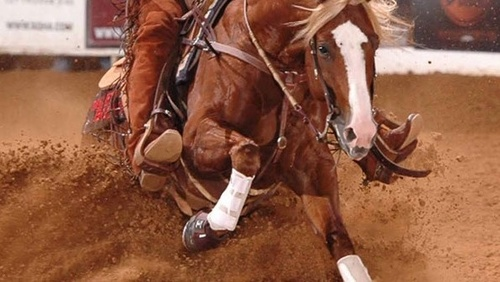 Horsemanship Patterns