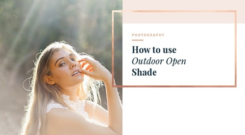 Outdoor Shaded Light