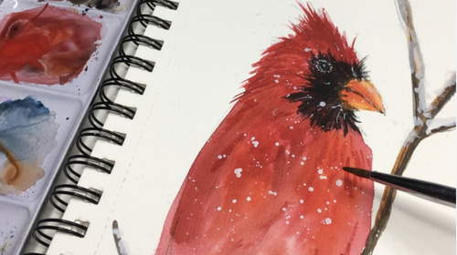 Watercolor Paint A Red Cardinal  - Step by Step