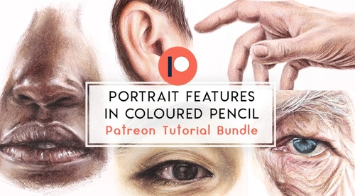 Portrait Features in Coloured Pencil