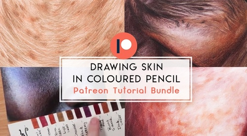 Drawing Skin in Coloured Pencil