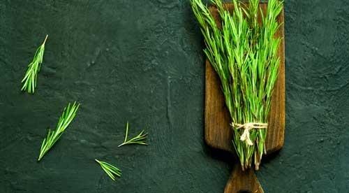 Medicinal Kitchen Herbs & Spices